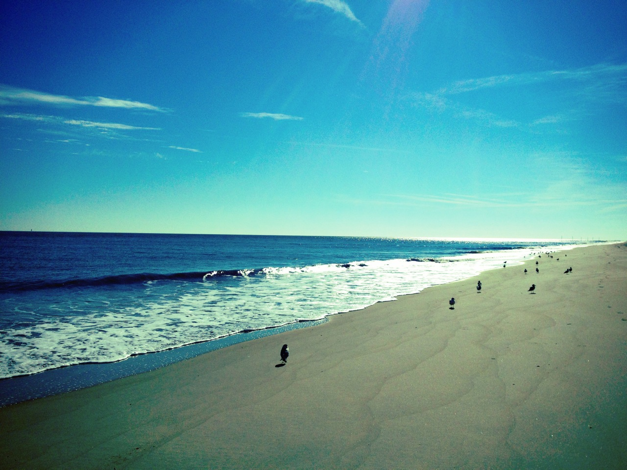 tybee island christian single men Search efforts continue for two swimmers reported missing off tybee island's  south beach.